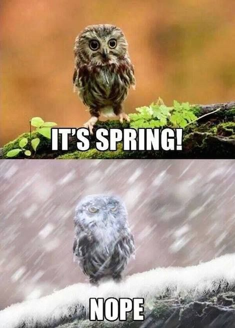 its spring