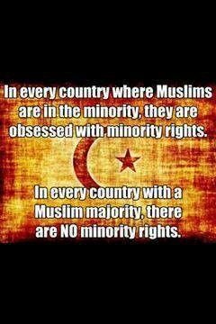 muslims in minority