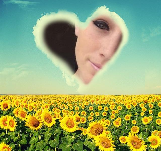 sunflowers with alexa
