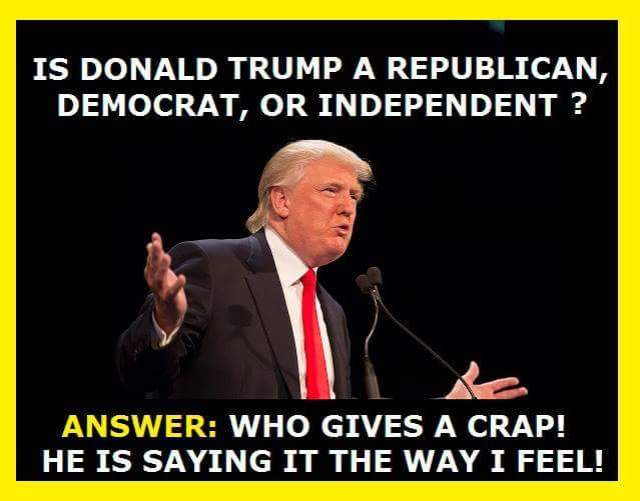 what is Donald Trump