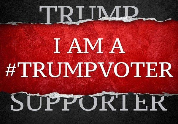 TRUMP VOTER2