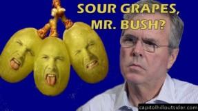 sour-grapes-bush-678x381