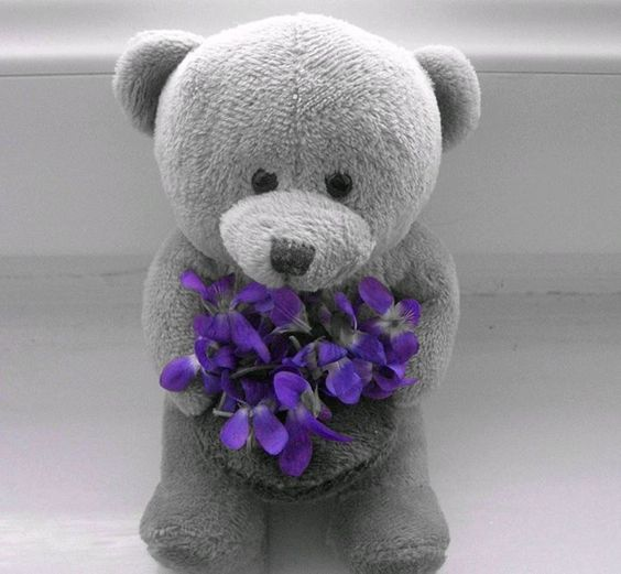 bear with flowers.jpg