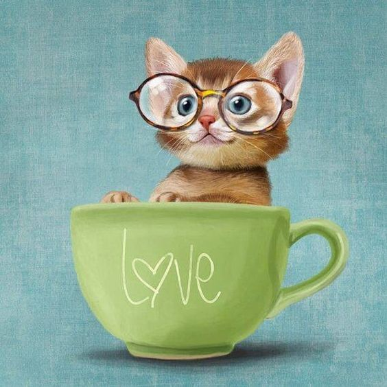 love-in-a-cup