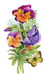 watercolor-colorful-pansies-with-butterfly-on-white-background-vector_201058958