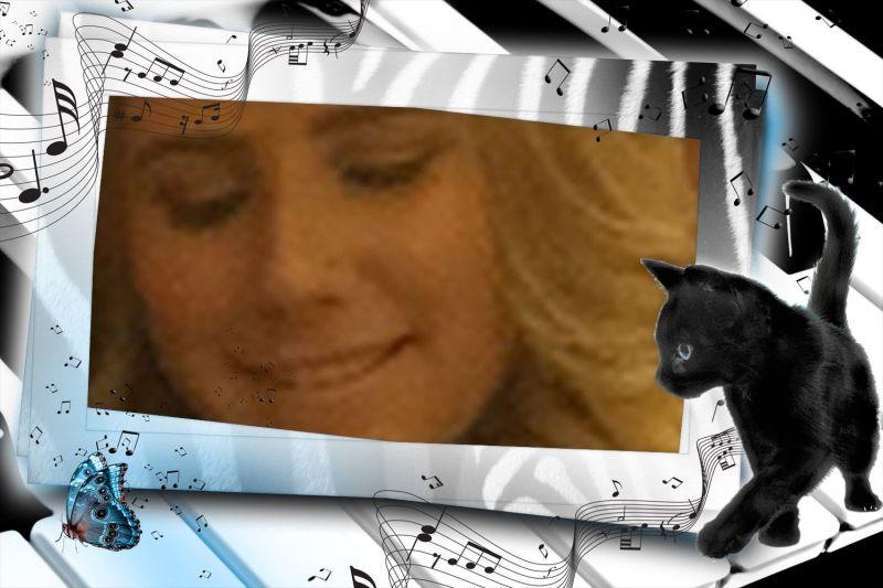 black cat and piano keys