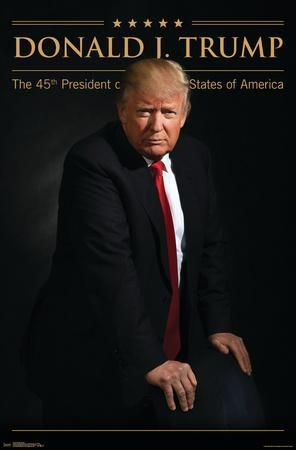 This image has an empty alt attribute; its file name is donald-j-trump-45.png
